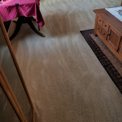 Carpet Cleaning Stain Removal (After)