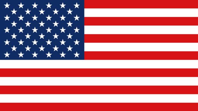Veteran Owned Business Flag